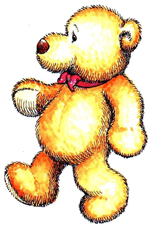 Toby Bear Profile Transparent